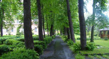 Ogród DPS Helclów